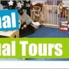 School 360 virtual tours